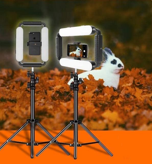 rabbit cam 2